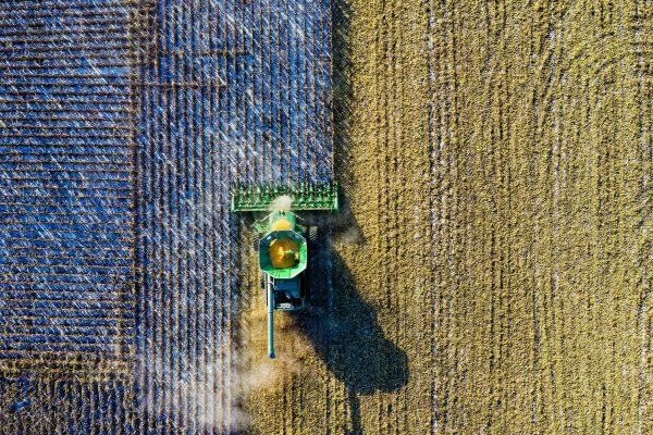 agruculture & farming